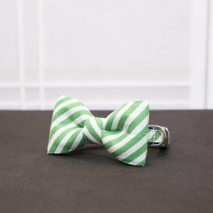CLL Green Seersucker Dog Bow Tie